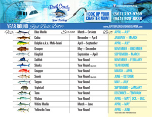Reel Candy Fishing Chart