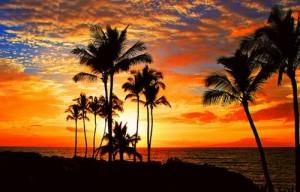 Ocean Sun Set Cruises Jupiter, Stuart, Bahamas